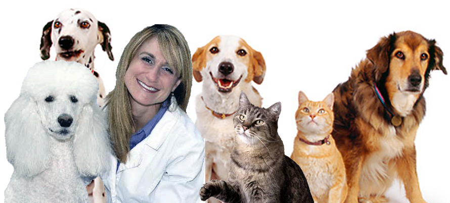 Dr. Rachel Addleman, DVM, DABVP, CVA and her dog Avi